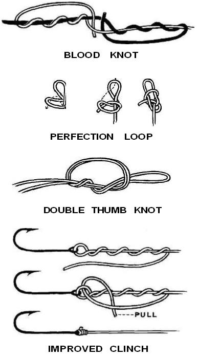 Fishing Knots Basic Leader Knots For Tying Fishing Lines