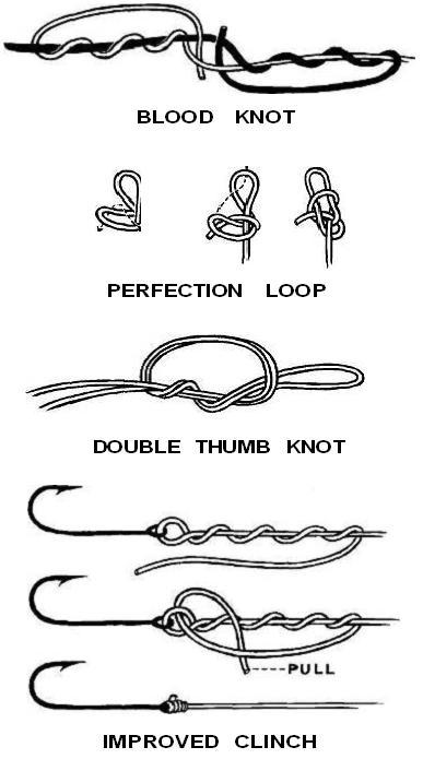 surf fishing rig diagrams
